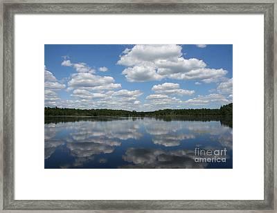 Pines Barren Bliss Framed Print by Christopher Mattie