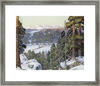 Pines In Winter Framed Print by George Gardner Symons