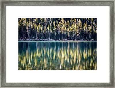 Pines Reflected In Tenaya Lake Framed Print