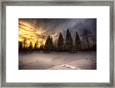 Pinewood River Framed Print by Jakub Sisak
