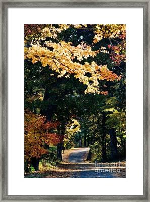 Pinewood Road Framed Print