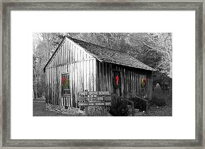 Piney Grove Christmas Framed Print by Jessica  st Lewis