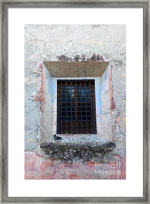 Pingeon At Window Framed Print by Oscar Gutierrez