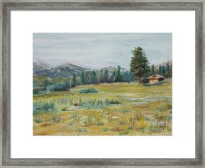 Pingree Park Framed Print by Mary Benke