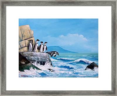 Pinguinos De Humboldt Framed Print