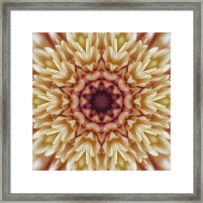 Pink And Cream Floral Abstract Tile 49 Framed Print by Cindy Boyd