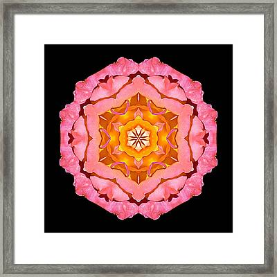 Framed Print featuring the photograph Pink And Orange Rose I Flower Mandala by David J Bookbinder