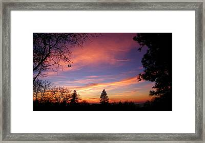 Pink And Orange Framed Print