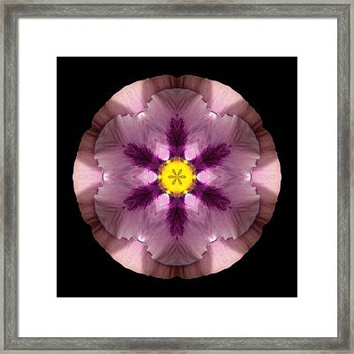 Framed Print featuring the photograph Pink And Purple Pansy Flower Mandala by David J Bookbinder