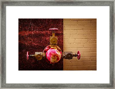 Pink And Rusted Framed Print