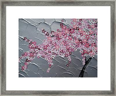 Pink And White Cherry Blossom Framed Print by Cathy Jacobs