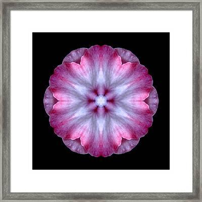 Pink And White Impatiens Flower Mandala Framed Print