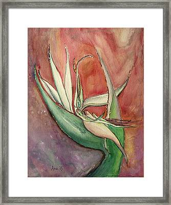 Pink Bird Of Paradise Framed Print by Anais DelaVega