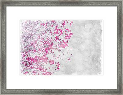 Pink Branches Framed Print by Cathie Tyler