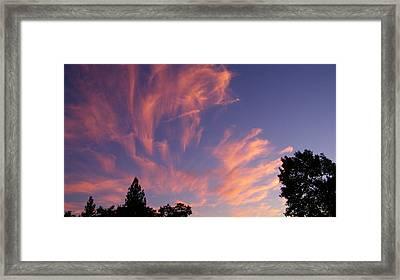 Pink Burst Framed Print