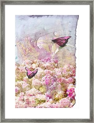 Pink Butterflies Framed Print by Juli Cromer