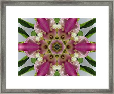 Pink Calla Lily Flower Mandala Framed Print