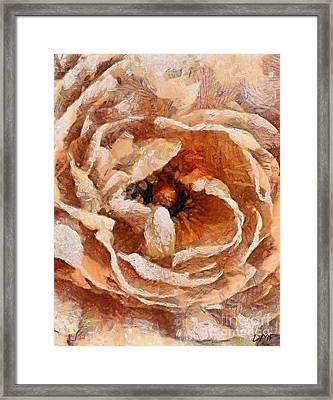 Peach Camellia Framed Print by Dragica  Micki Fortuna