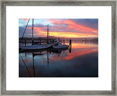 Framed Print featuring the photograph Pink Charisma by Suzy Piatt