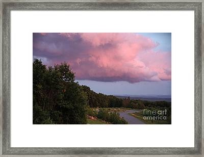Pink Cloud Framed Print by Randi Shenkman