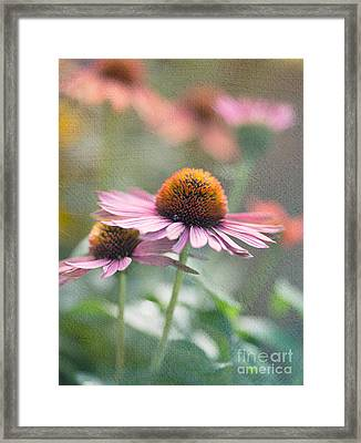 Pink Cone Framed Print