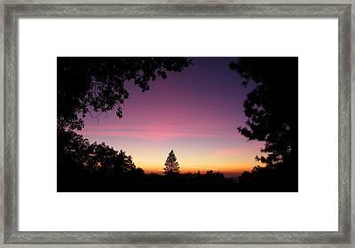 Pink Contrails Framed Print