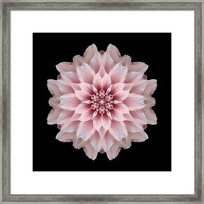 Pink Dahlia Flower Mandala Framed Print