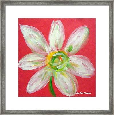 Pink Daisy Framed Print by Cynthia Hudson