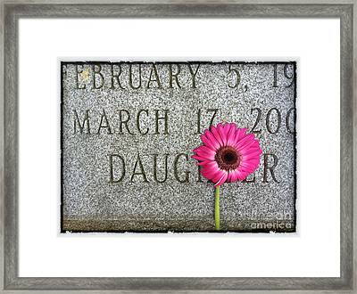 Pink Daisy On Grave For Daughter Framed Print
