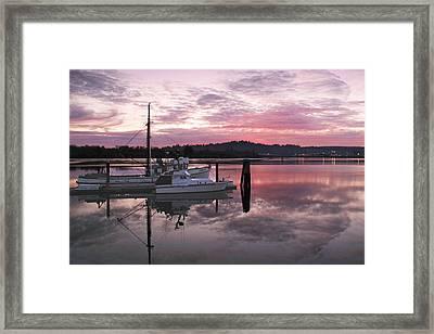 Pink Dawn Framed Print by Suzy Piatt