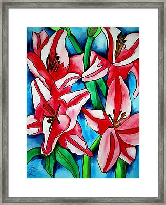 Pink Day Lilies Framed Print by Sacha Grossel