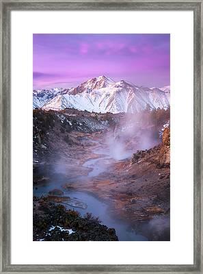 Pink Eastern Sierra Framed Print