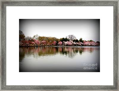 Pink Echoes Framed Print by Patti Whitten