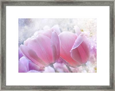 Pink  Framed Print by Elaine Manley