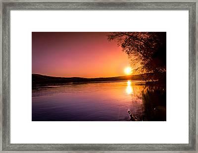 Pink Evening Framed Print by Jahred Allen