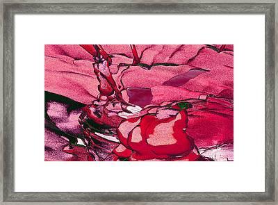Pink Eyes Framed Print by Matt Lindley