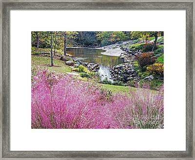 Pink Fall Framed Print