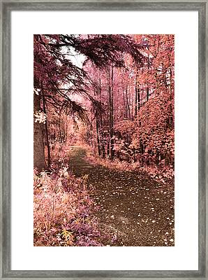 Pink Fall Framed Print by Larysa  Luciw