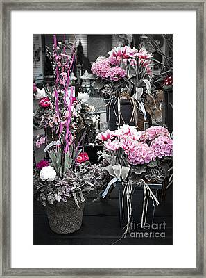 Pink Flower Arrangements Framed Print by Elena Elisseeva