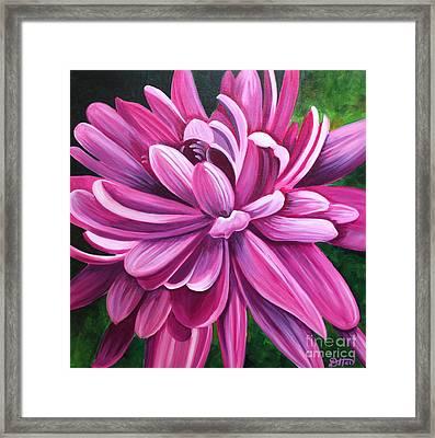 Pink Flower Fluff Framed Print