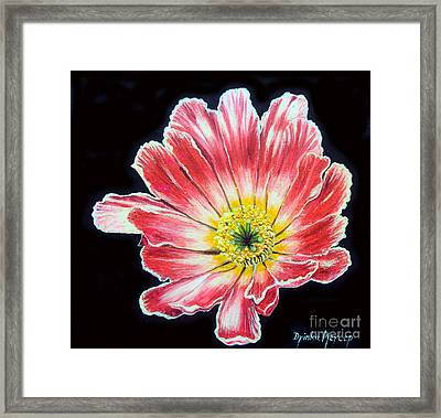 Pink Flower Painting Oil On Canvas Framed Print by Drinka Mercep