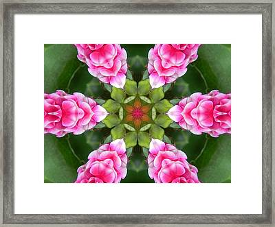 Pink Flower Star Mandala Framed Print