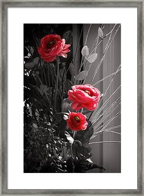 Pink Flowers Framed Print by Kara  Stewart