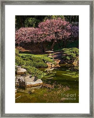 Pink Gardens Framed Print by Jamie Pham