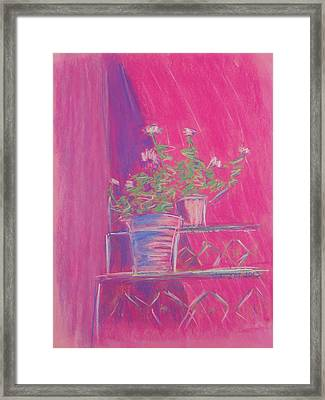 Pink Geraniums Framed Print by Marcia Meade