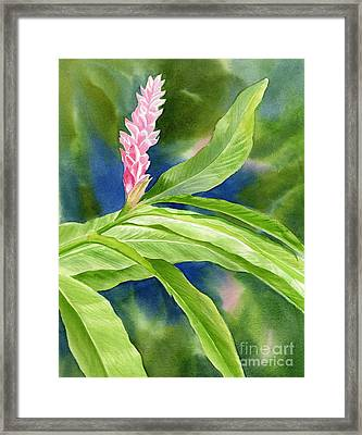 Pink Ginger With Blue Green Background Framed Print by Sharon Freeman