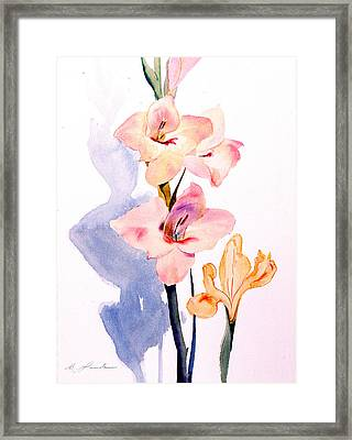 Pink Gladiolas Framed Print by Mark Lunde