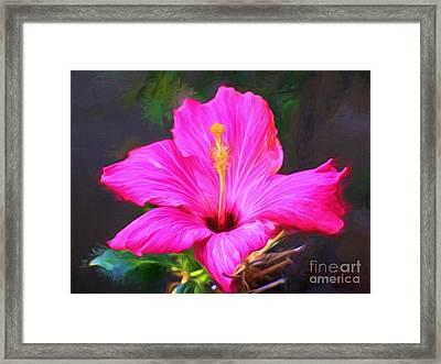 Pink Hibiscus Digital Painting In Oil Framed Print