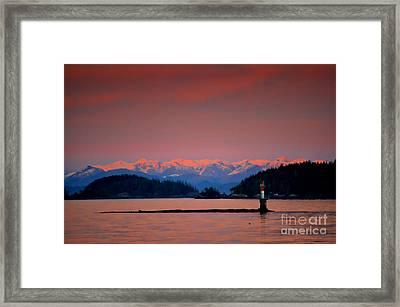 Pink Horizon Framed Print by Gail Bridger