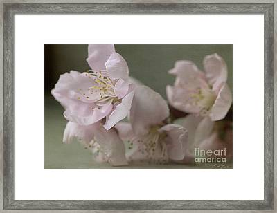 Pink Is The Color Of Happiness Framed Print